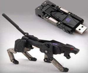 Transformer USB Leopard