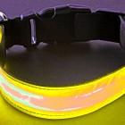 LED Hundehalsband