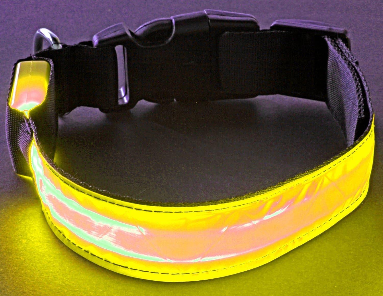LED_Hundehalsband