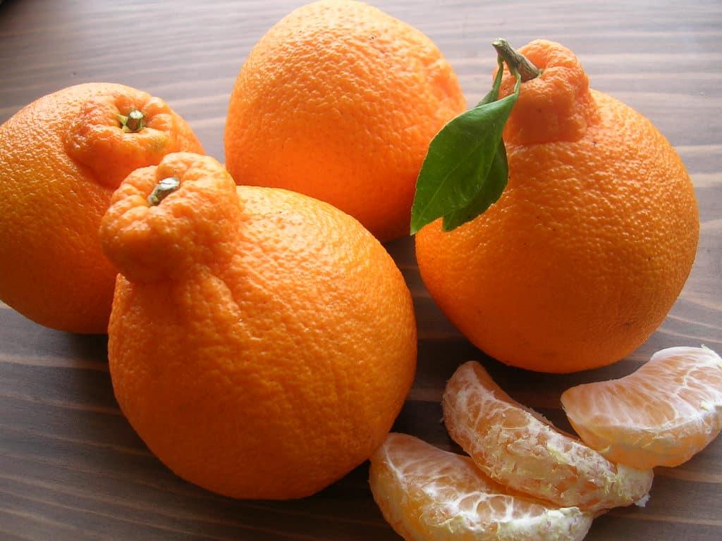 dekopon_orangen