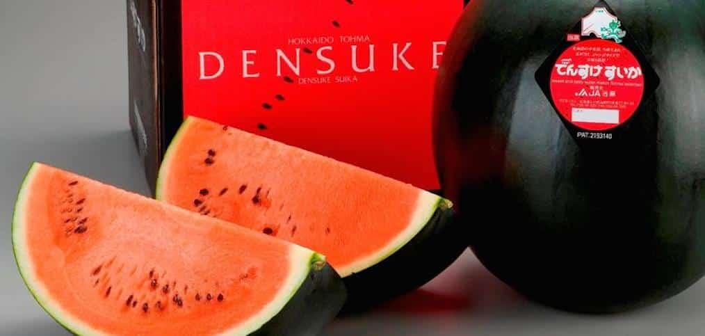densuke_wassermelone