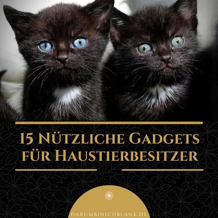 10 Nützliche Gadgets für Haustierbesitzer